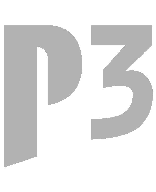 P3 Leadership